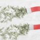 تبدیل نیروی جنسی به ثروت - قسمت 39 - قانون جذب و قناعت