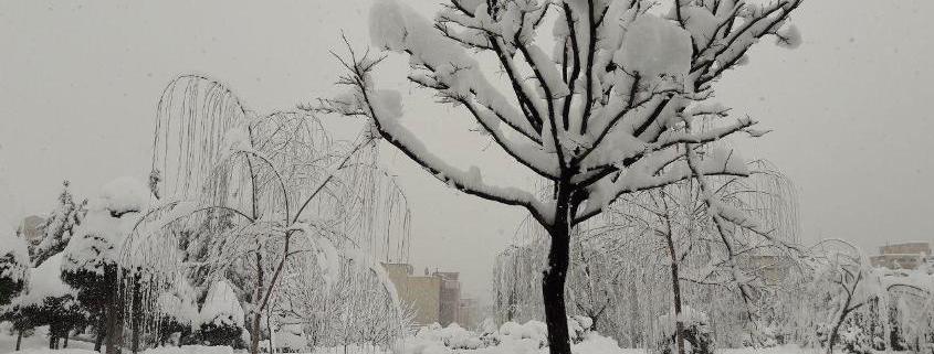 برف زیبا